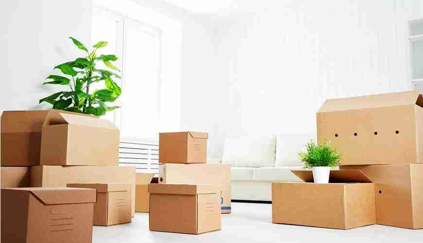 Moving out/In Expenses